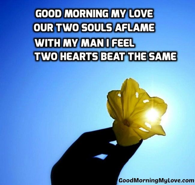 Top Love Quotes 20