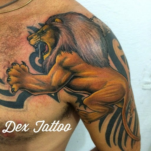Awesome Lion Tattoos Designs