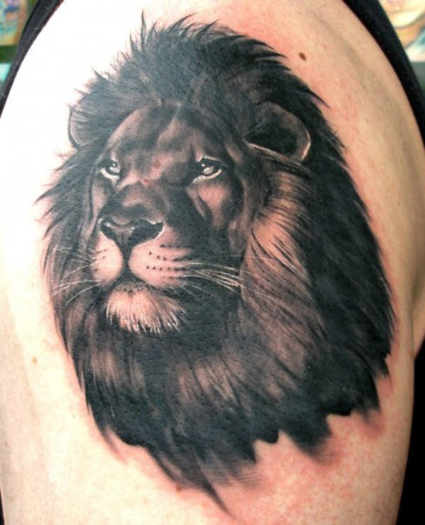 Outstanding Lion Tattoo