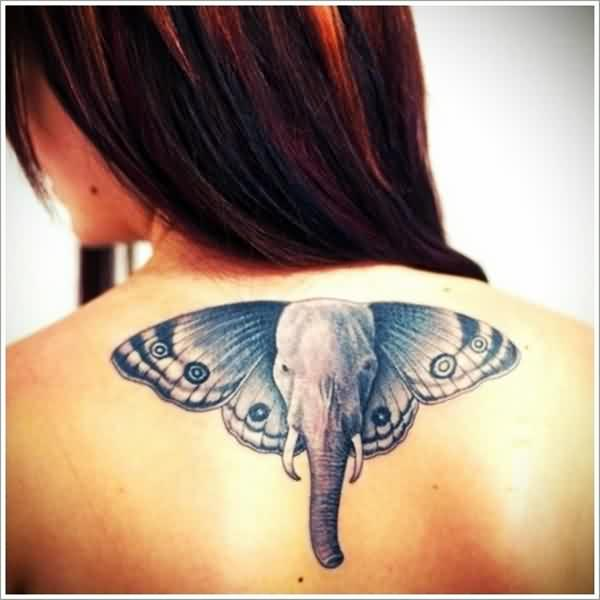 Awesome Animal Tattoo Designs