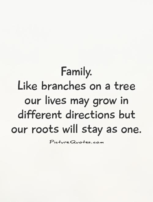 Awesome Family Quotations and Sayings