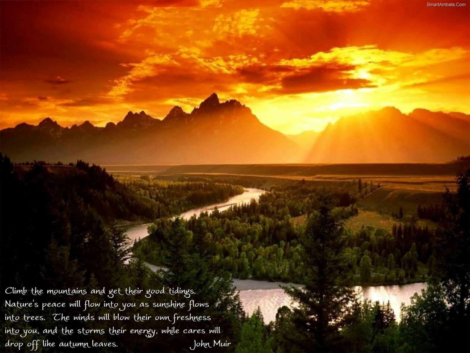 Awesome Nature Quotes