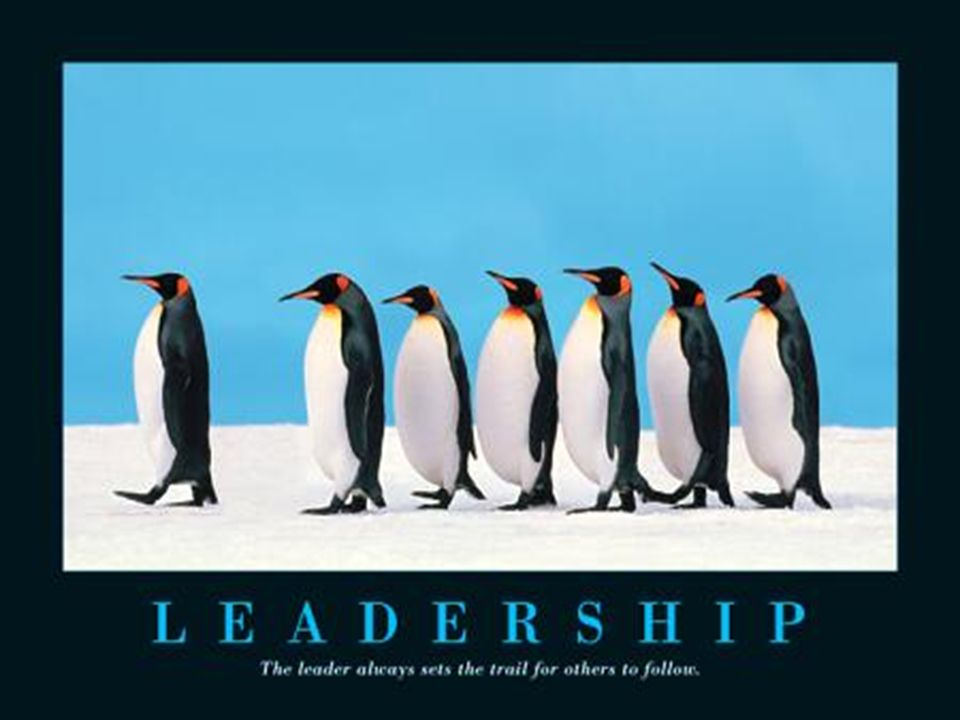 Brilliant Leadership Quotations