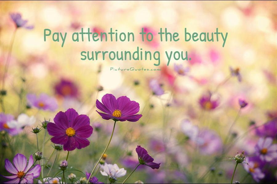 Charming Nature Quotations