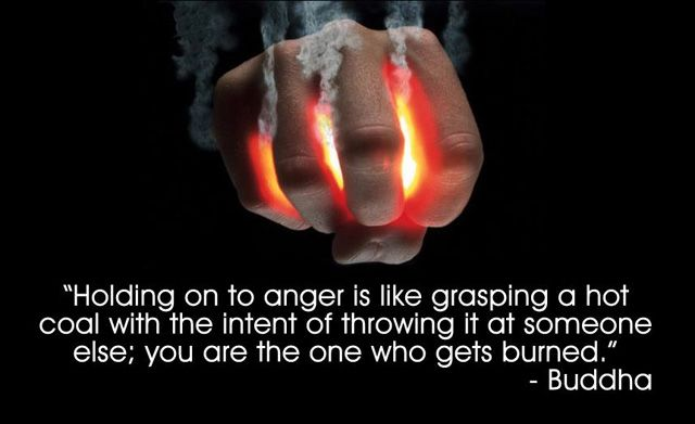 Elegant Anger Quotations