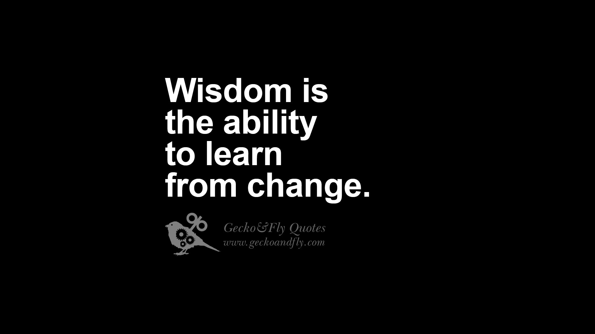 Wise Quotes About Life 24 Funny Eye Opening Quotes About Wisdom, Truth And Meaning Of - Daily Qoute