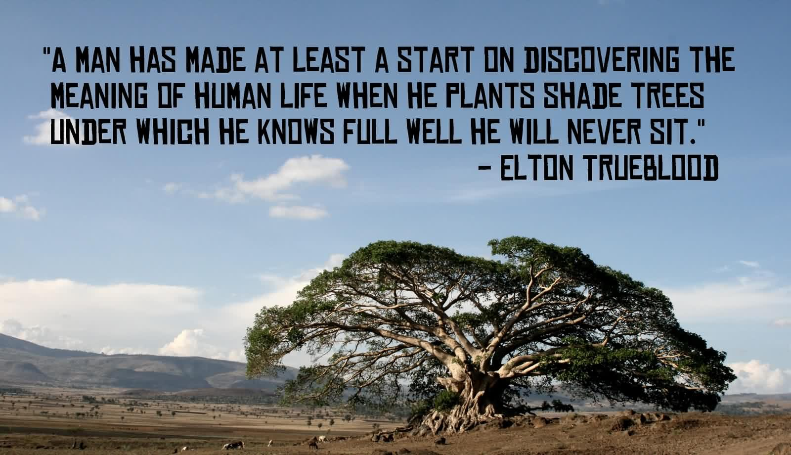 Extreme Nature Quotes