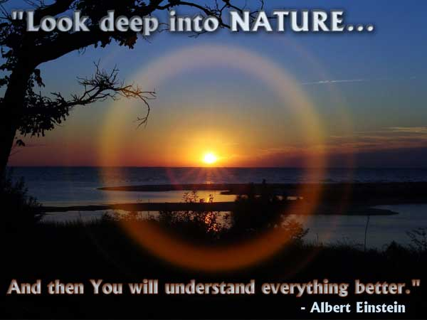 Fantastic Nature Quotations and Quotes