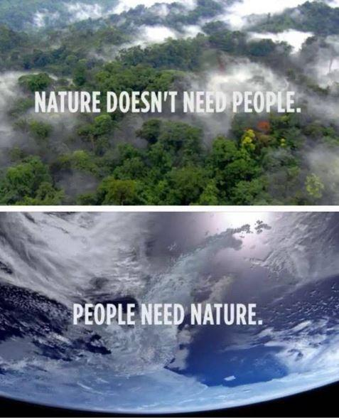 Good Nature Quotations and Quotes