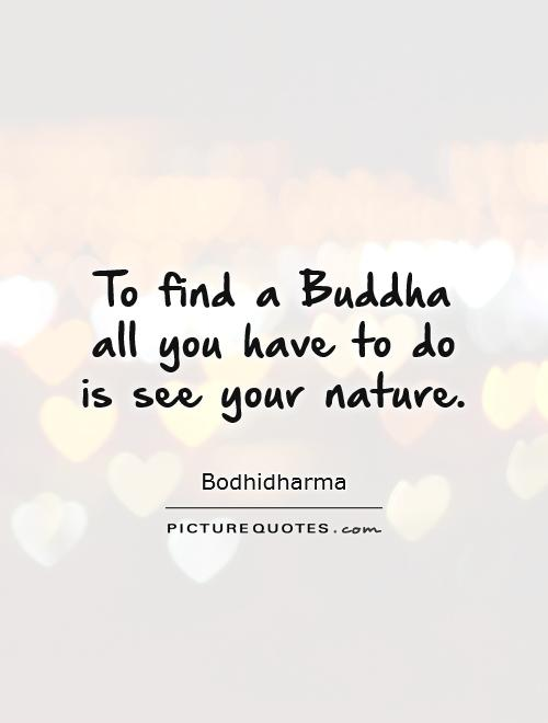 Latest Buddha Quotations and Sayings