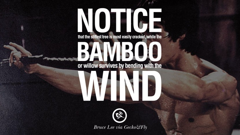 Marvelous Bruce Lee Quotes