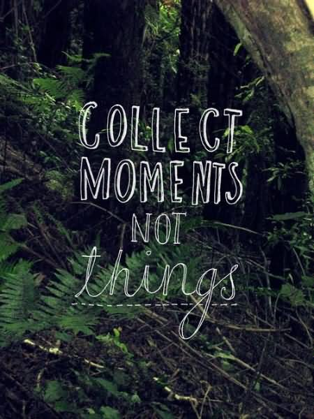 Mind Blowing Nature Quotations