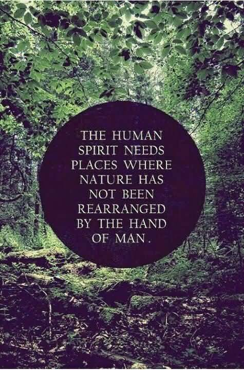 Mind Blowing Nature Sayings