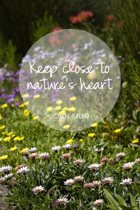New Nature Quotes