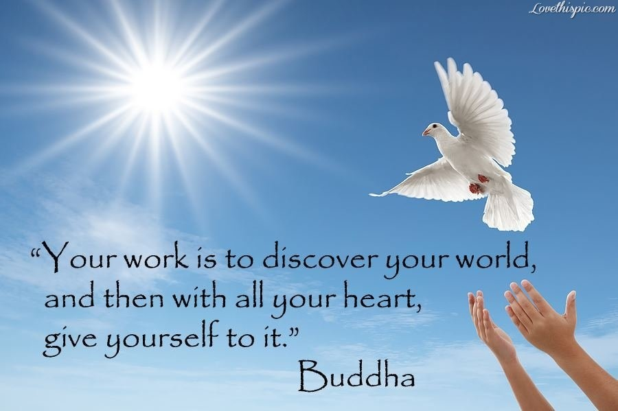 Outstanding Buddha Quotes
