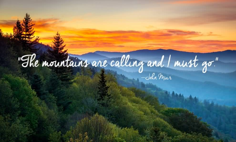 Outstanding Nature Quotations
