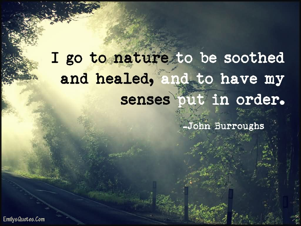 Outstanding Nature Quotes