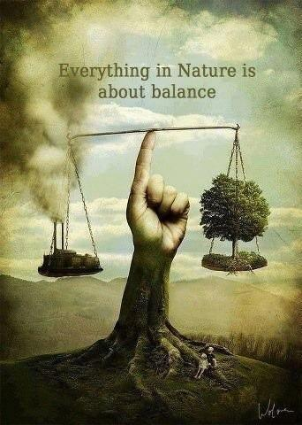 Simple Nature Quotations and Quotes