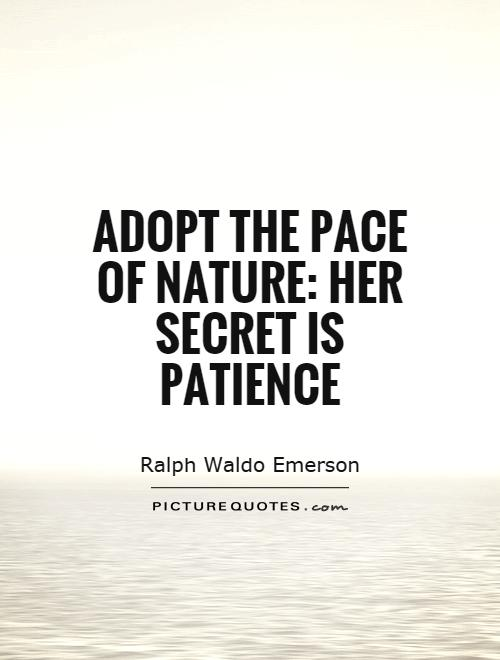 Ultimate Nature Quotations and Quotes