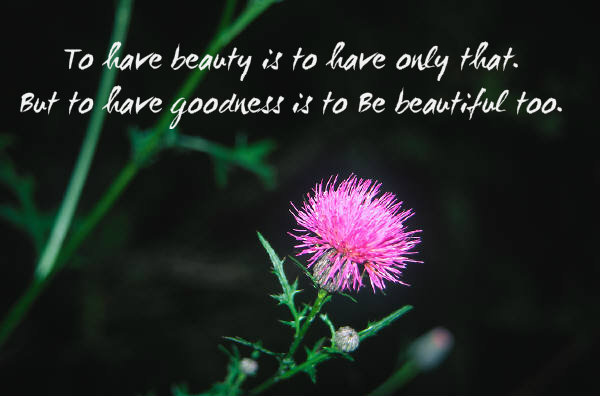 Incredible Beauty Quotations