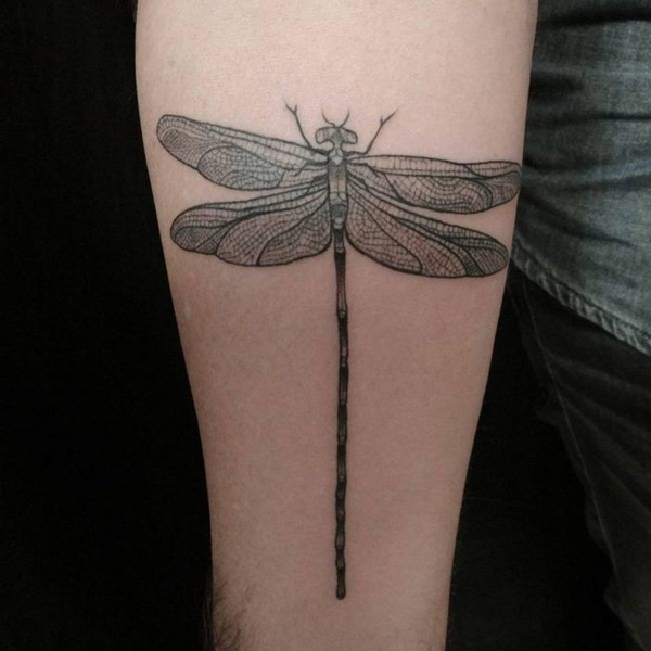 Nice Dragonfly Tattoos Design
