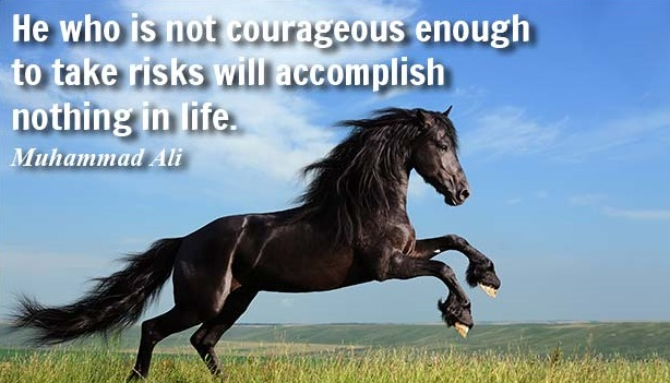 Superb Courage Sayings