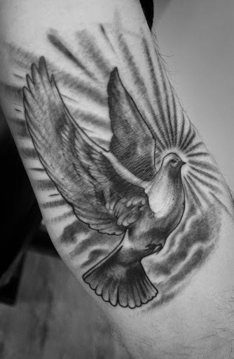 Wonderful Dove Tattoo Designs