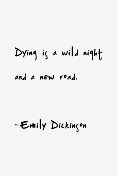 2 additionally 398427898267960165 moreover Best Emily Dickinson Quotes likewise No Words Needed Tumblr besides Double Nickel Birthday. on happy birthday funny